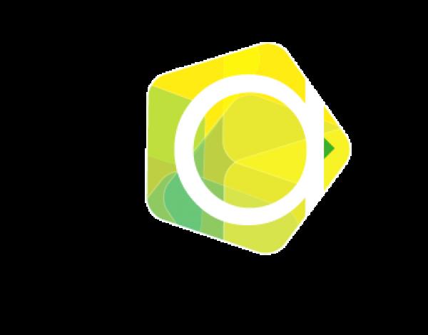 logo_prooject_analytics2